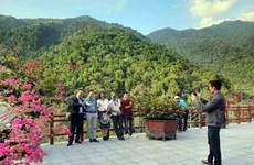 COVID-19 : le tourisme vietnamien cherche à rebondir en 2021
