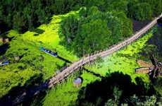 Visite printanière de la forêt de melaleuca Tra Su