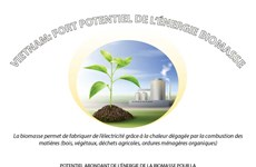 Vietnam: fort potentiel de l'énergie biomasse