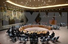 Conseil de sécurité : les priorités du Vietnam durant sa prochaine présidence