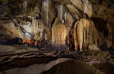 """A la découverte de la nature immaculée dans le """"Royaume des grottes"""" de Quang Binh"""