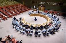 Le Vietnam appelle à relever les défis sécuritaires en Afrique de l'Ouest et au Sahel