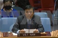 Conseil de sécurité de l'ONU: le Vietnam se dit inquiet des tensions politiques à Chypre