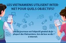 Les Vietnamiens utilisent Internet pour quels objectifs?