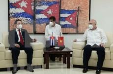 Le Vietnam et Cuba promeuvent les relations entre les deux Partis