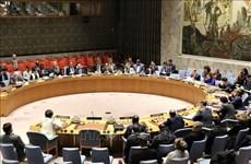 Le Vietnam réaffirme sa politique de non-prolifération et de désarmement nucléaire