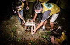 Le parc national de Cuc Phuong relâche des animaux sauvages dans la nature