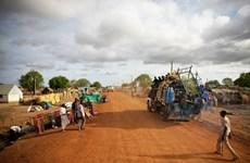 Le Vietnam souligne l'importance de la FISNUA pour la sécurité dans la région d'Abyei