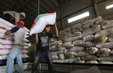 Les exportations de riz du Cambodge continuent de baisser