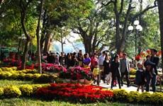Hanoï : Augmentation du nombre de touristes durant le Têt traditionel