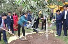 La présidente de l'AN plante un arbre dans la zone commémorative du Président Hô Chi Minh