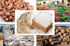 La liste de dix produits agricoles clés du Vietnam publiée
