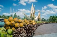 La 5e édition du Festival de la noix de coco de Bên Tre prévue en novembre