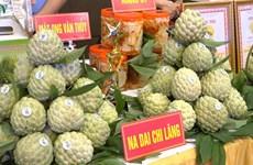 Lang Son : Bientôt la 3e Journée des pommes cannelles Chi Lang