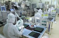 Vinh Phuc: le secteur électrique et de fabrication des composants électroniques en hausse de 8%