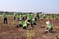 Organisation du programme « I Green We Green Vietnam » à Nam Dinh