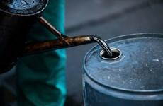 Hausse de 3,3% en 11 mois du volume des exportations de pétrole brut