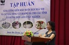 Renforcer le contrôle du commerce de l'ivoire et de la faune sauvage