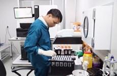 Le décodage du génome vietnamien - la porte qui ouvre le passé et l'avenir