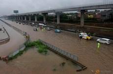 Indonésie : Au moins neuf morts lors des inondations du Nouvel An à Jakarta