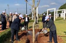 Lancement de la fête de plantation d'arbres dans différentes localités