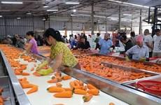 Vinh Phuc promeut l'industrie de transformation agricole