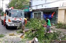 Contrôle du règlement des conséquences du typhon No9 à Quang Ngai