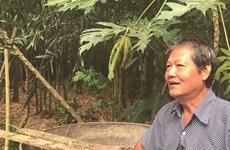 Un protecteur d'aigrettes à Ðông Tháp
