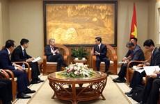 Le vice-PM Vu Duc  Dam reçoit le président de Microsoft d'Asie