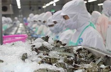 La filière crevetticole vise un chiffre d'affaires à l'export de 500 millions d'USD en R. de Corée