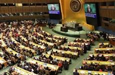 ONU : le Vietnam dévoile ses priorités en matière de droits des femmes
