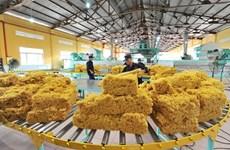 Deux tiers du volume de caoutchouc du Vietnam exportés en Chine