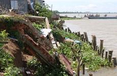 Plus de 6.000 ménages de Dong Thap doivent être relogés