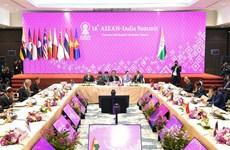 L'Inde et l'ASEAN préconisent la paix en mer Orientale