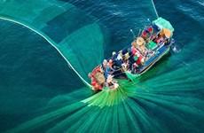 Un Vietnam magnifique vu d'en haut à un concours international de photos