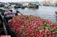 Développement des produits touristiques typiques de la ville de Can Tho