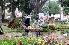 Ho Chi Minh-Villle s'active avec des festivals de fleurs, des marchés du Tet