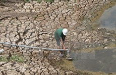 Binh Thuan annonce une situation d'urgence en raison d'une sécheresse de niveau 2