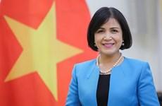 Le Vietnam assiste à la réunion du conseil exécutif du CIDHG