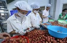 Le Vietnam et le Japon discutent de la stimulation du commerce des biens de consommation