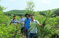 Cinq garçons au commerce des produits huilés