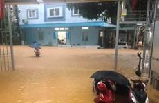 Crues : de lourds dégâts dans la province d'Ha Giang