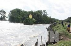 Colloque sur le développement durable du delta du Mékong