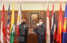 Le CAP à Pretoria salue les contributions du Vietnam en tant que président de l'ASEAN