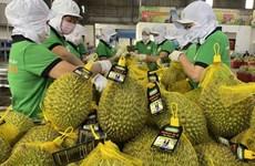 Les exportations de produits agricoles du Vietnam vers l'Australie en hausse