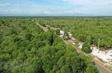 Vietnam et Finlande renforcent leur coopération dans le développement de coopératives forestières
