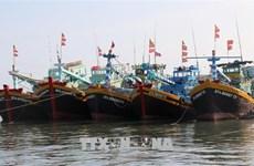 Le Vietnam est déterminé à faire retirer le « carton jaune » sur la pêche INN