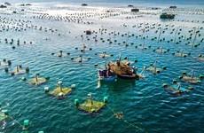 Développement synchrone des infrastructures pour l'aquaculture marine