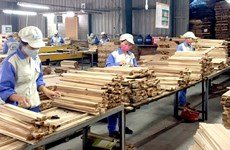 Les échanges commerciaux Vietnam – Afrique du Sud atteindra 2 milliards de dollars