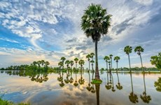 De belles images du Vietnam dans la presse internationale